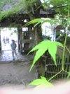 2009_050420079130111
